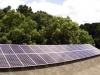 canon-georgia-solar-powered-alpaca-farm-4